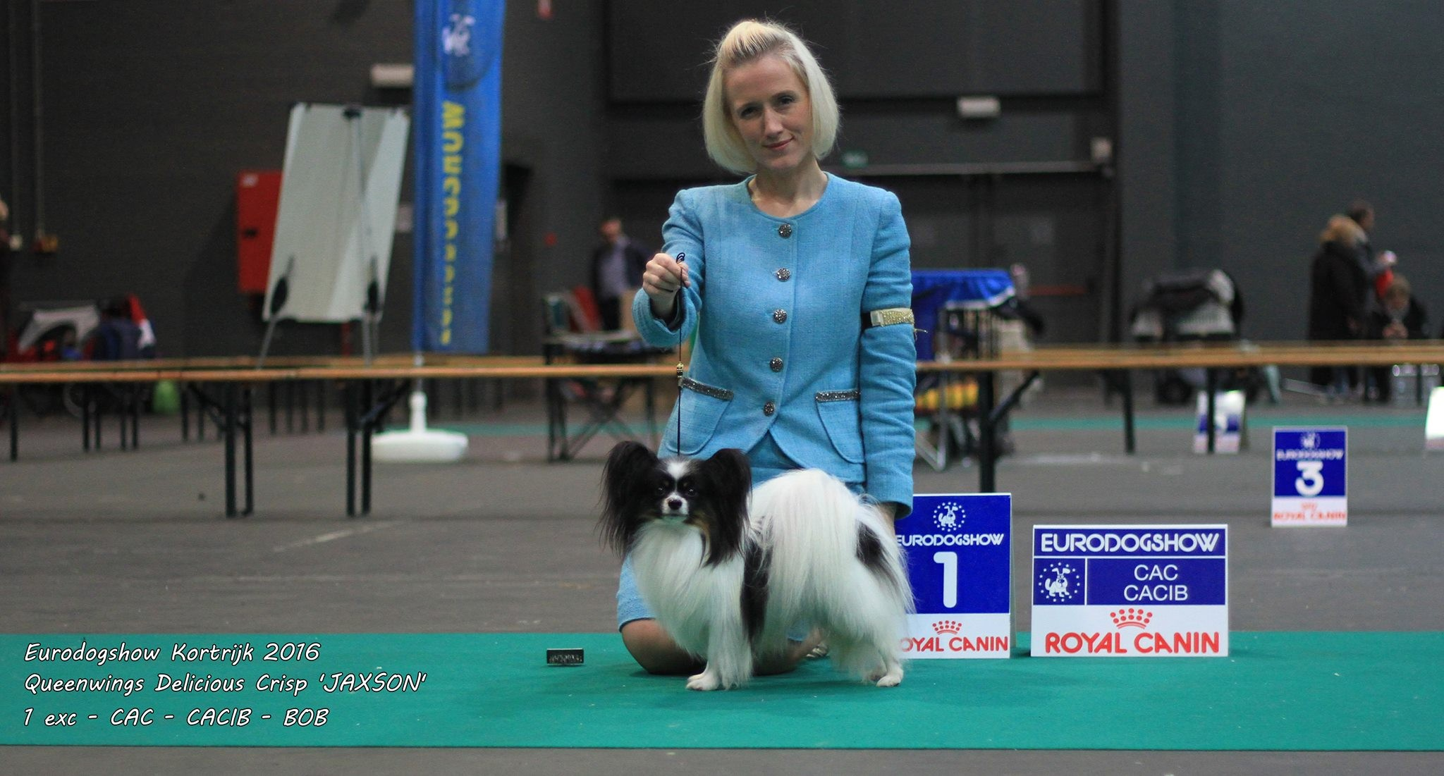 BOB and Crufts Qualification at Eurodogshow Kortrijk for